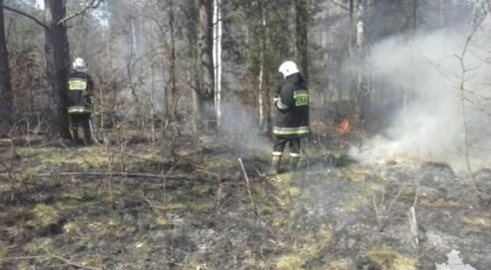 Pożary-Gmina-Stąporków-01