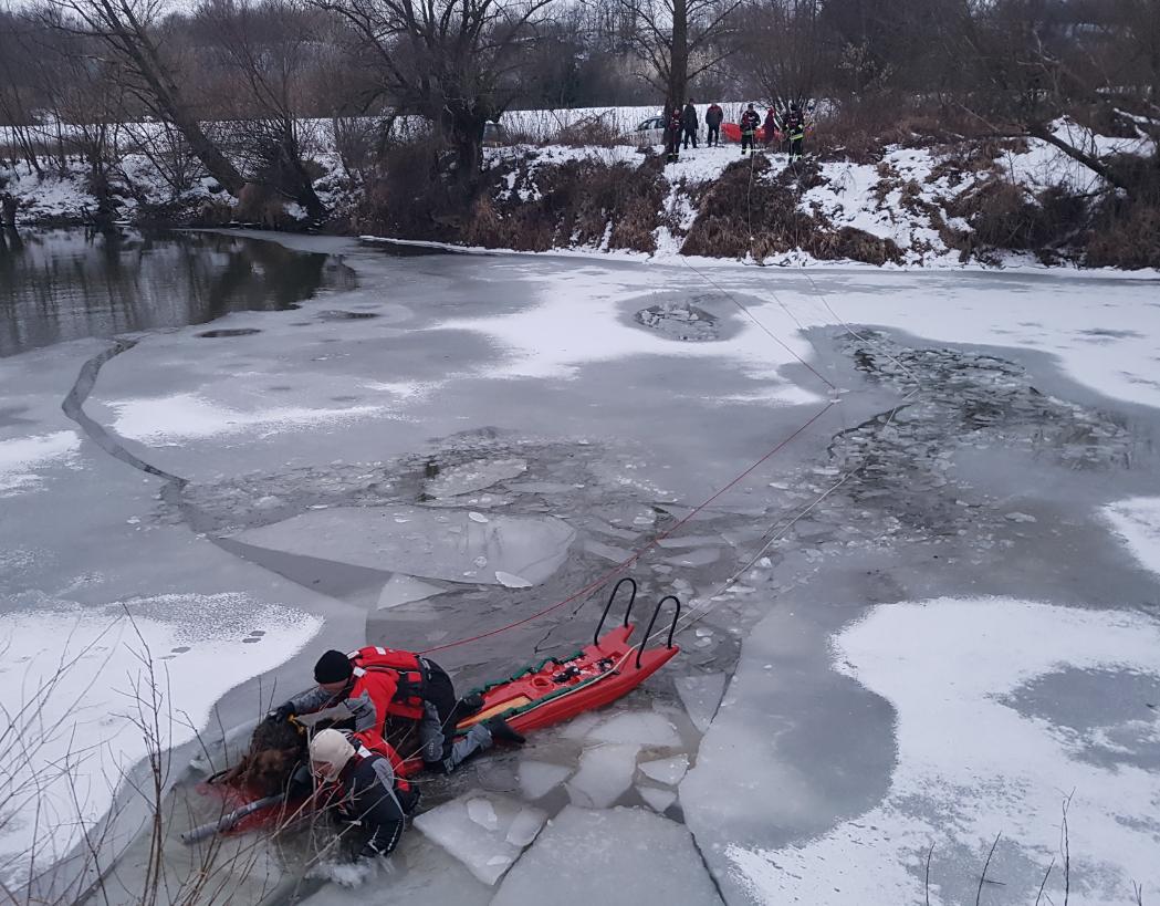 Uratowali psy z rzeki, Sandomierz (2)