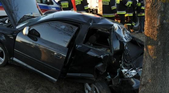 Kierowca uderzył w drzewo, Busko (1)