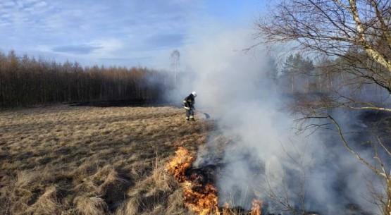 Pożary traw, KP PSP Włoszczowa (5)