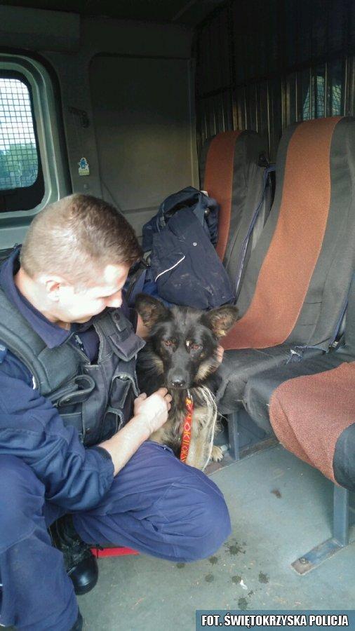 Policjant z psem