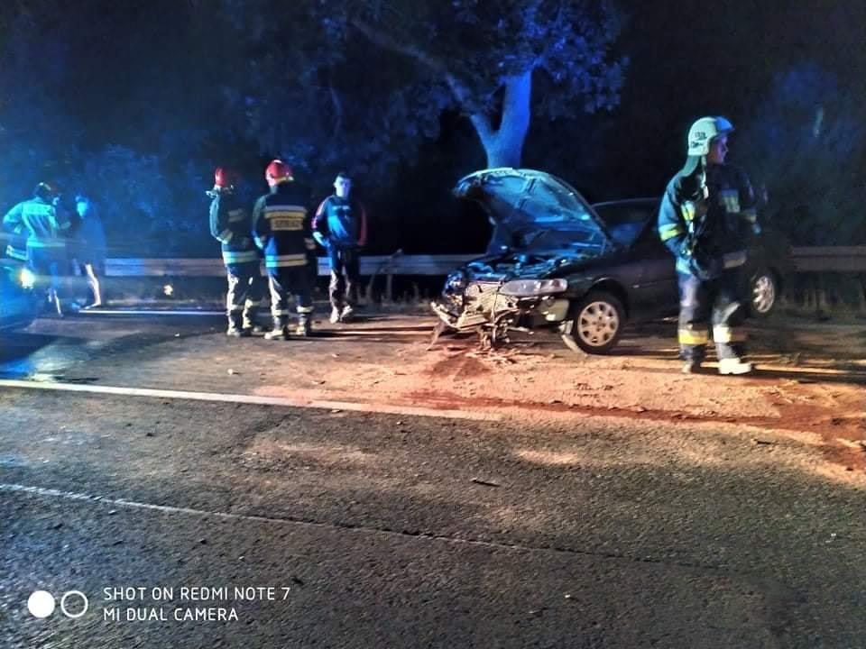 Zderzenie auta z łosiem (3)