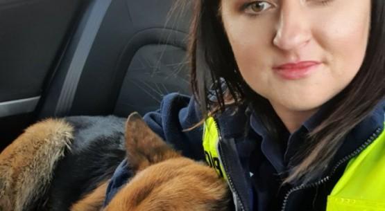Policjanci zaopiekowali się psem