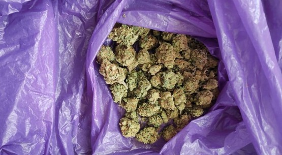 Narkotyki Opatów (1)