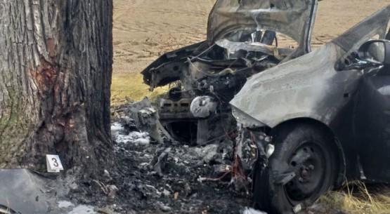 samochód uderzył w drzewo 3